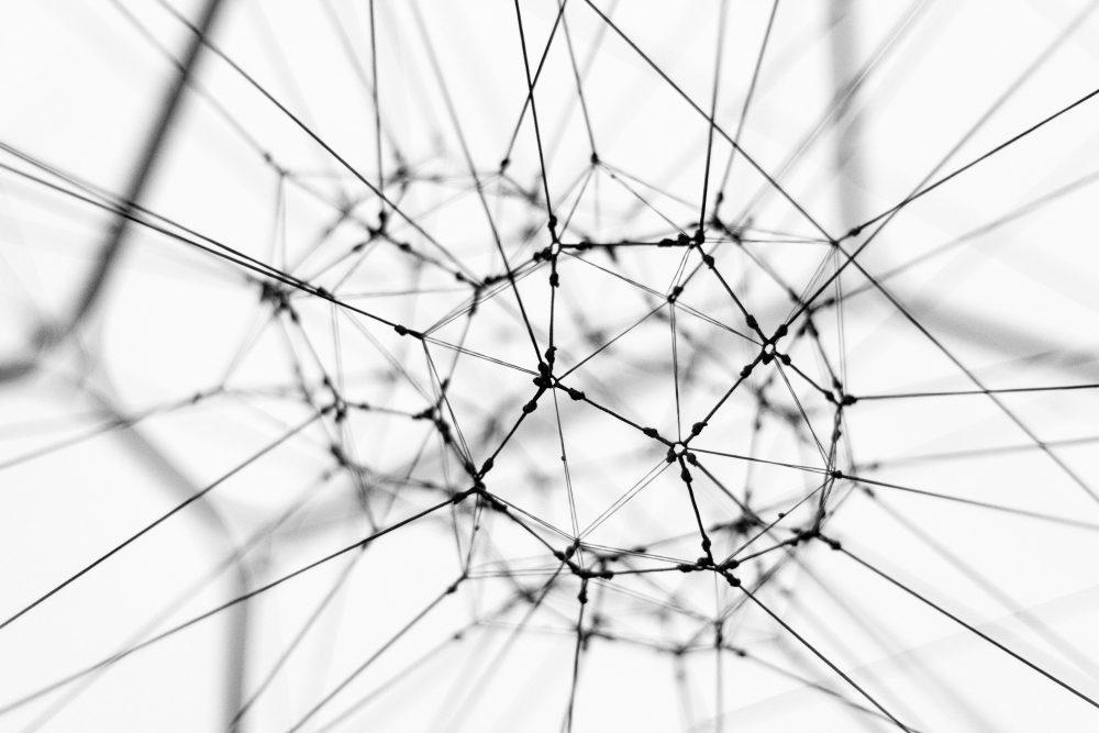 crescere social network conoscenze