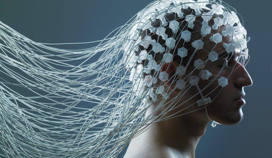 neuromarketing cervello