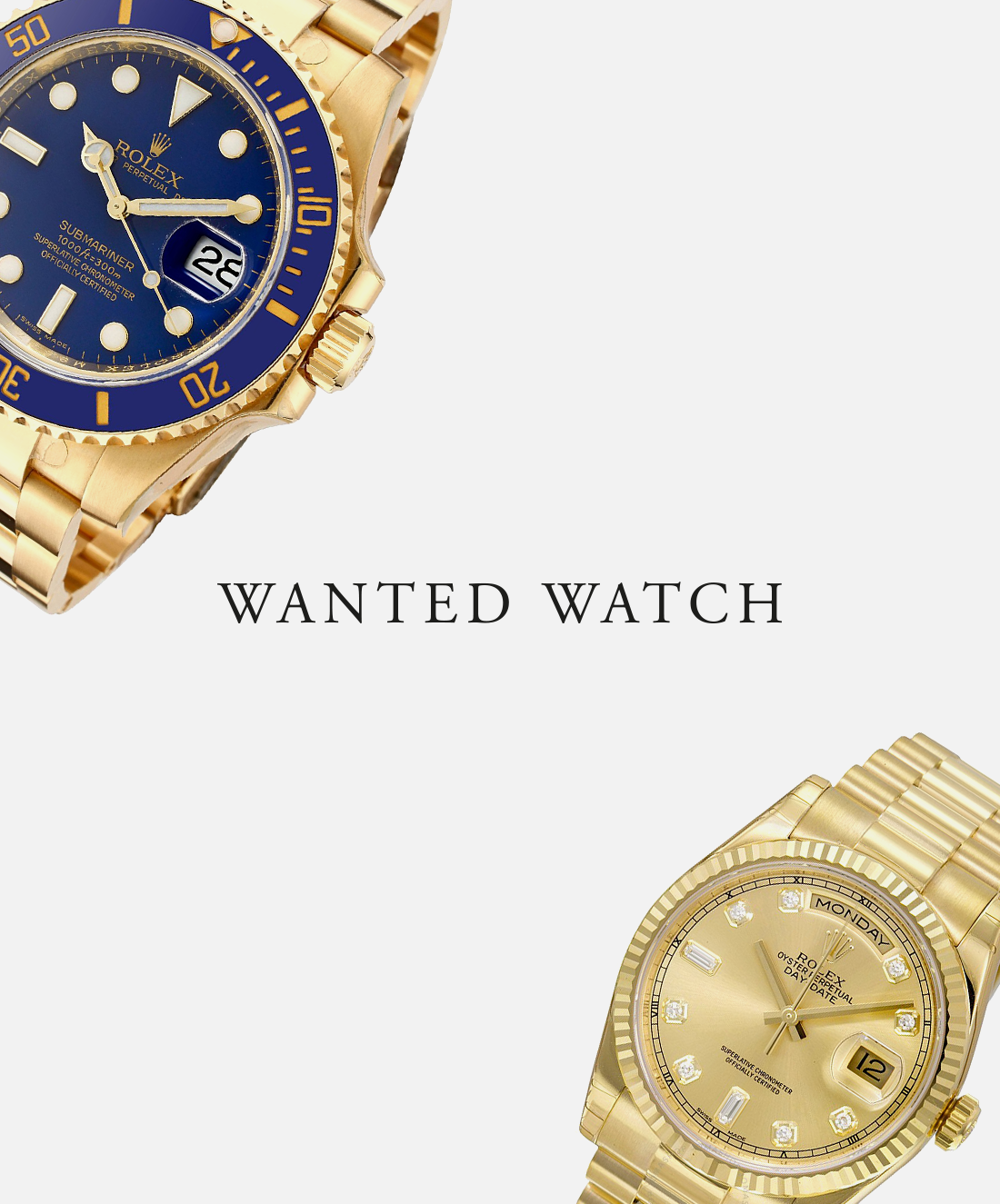 Wanted Watch orologi